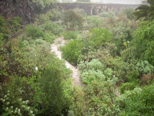 barranco guiniguada
